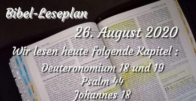 Foto: Bibelreise Leseplan